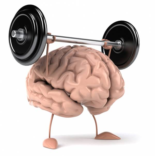 take your brain to the gym day